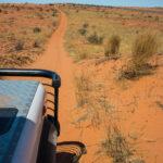4x4 Route to Bitterpan, Kalahari Transfrontier National Park