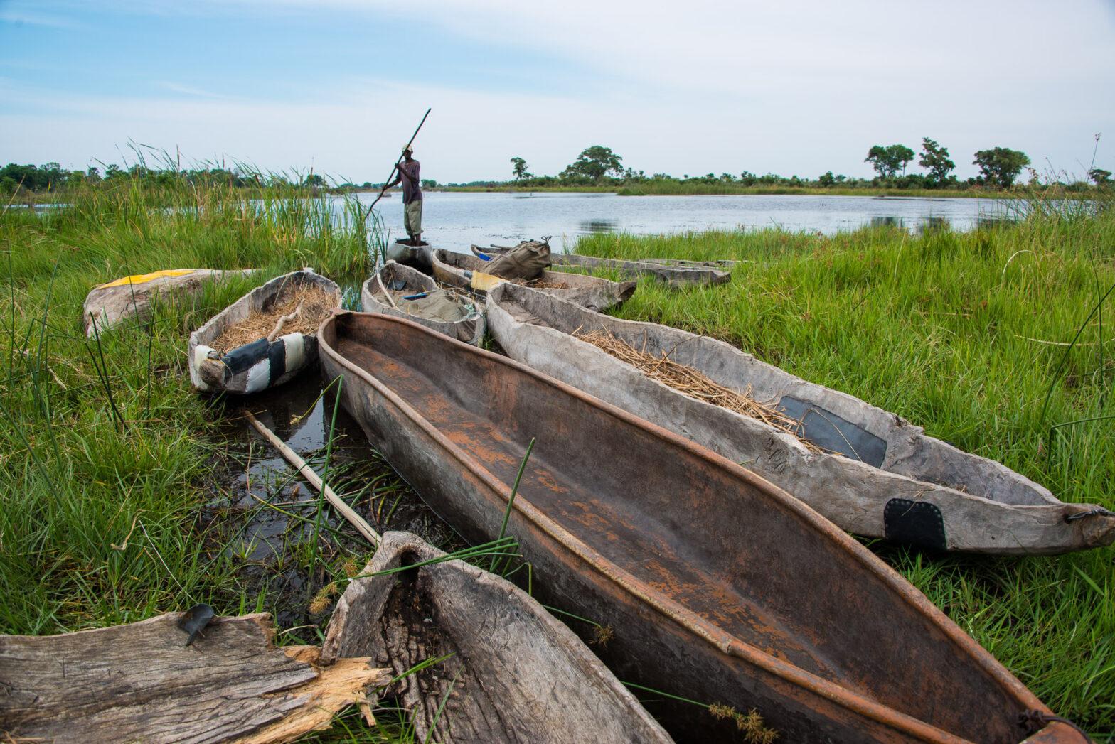 Mokoro, Okawango Delta, Botwana