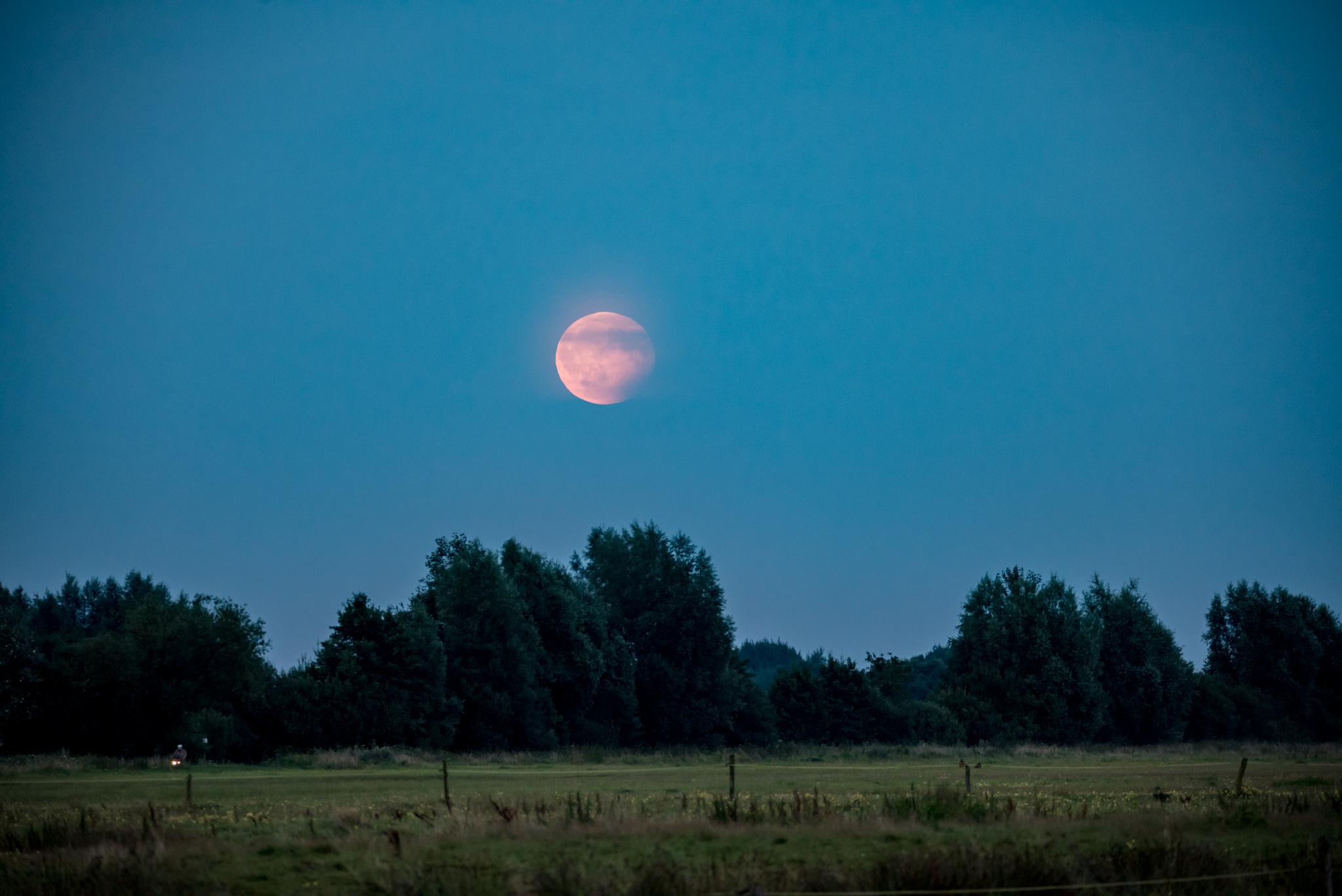 Partial Lunar Eclipse in Bremen, 7.8.2017